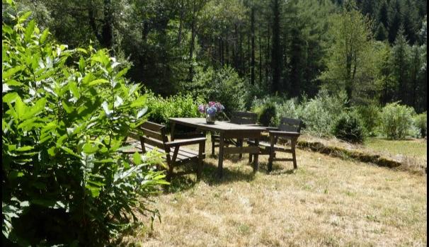 A vendre Brassac Belle longère de 240m2 sur 9500M2 de prés et bois. + dépendance 40m2