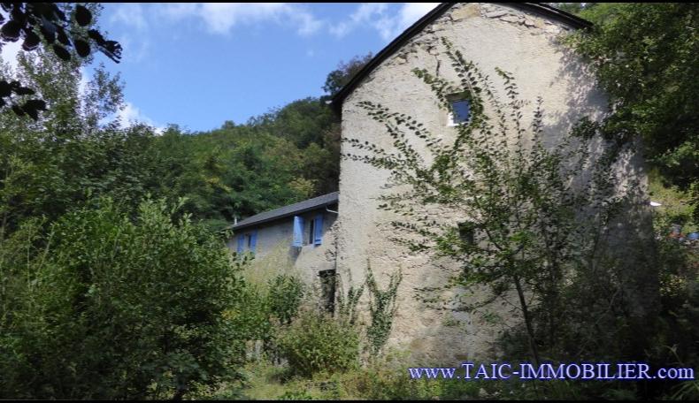 A vendre Moulin du XVIIème sur 250m2 et 4000m2 de terrain, rivière poissoneuse - Secteur Brassac, Vabre